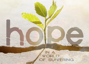 National Conference - 24-26 April 2015 Hope in a World of Suffering - more details