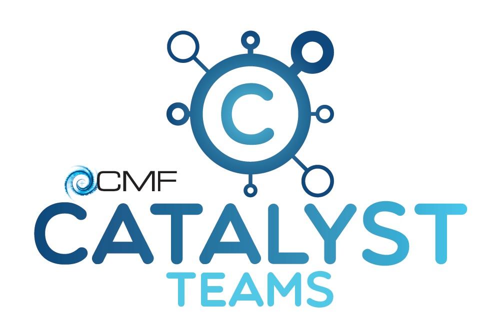 Catalyst Team Online Gathering 2021
