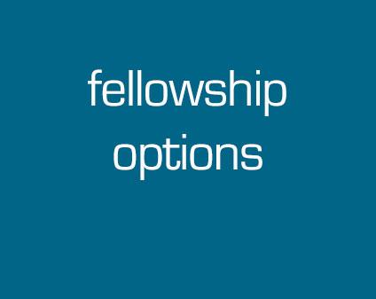 Fellowship options
