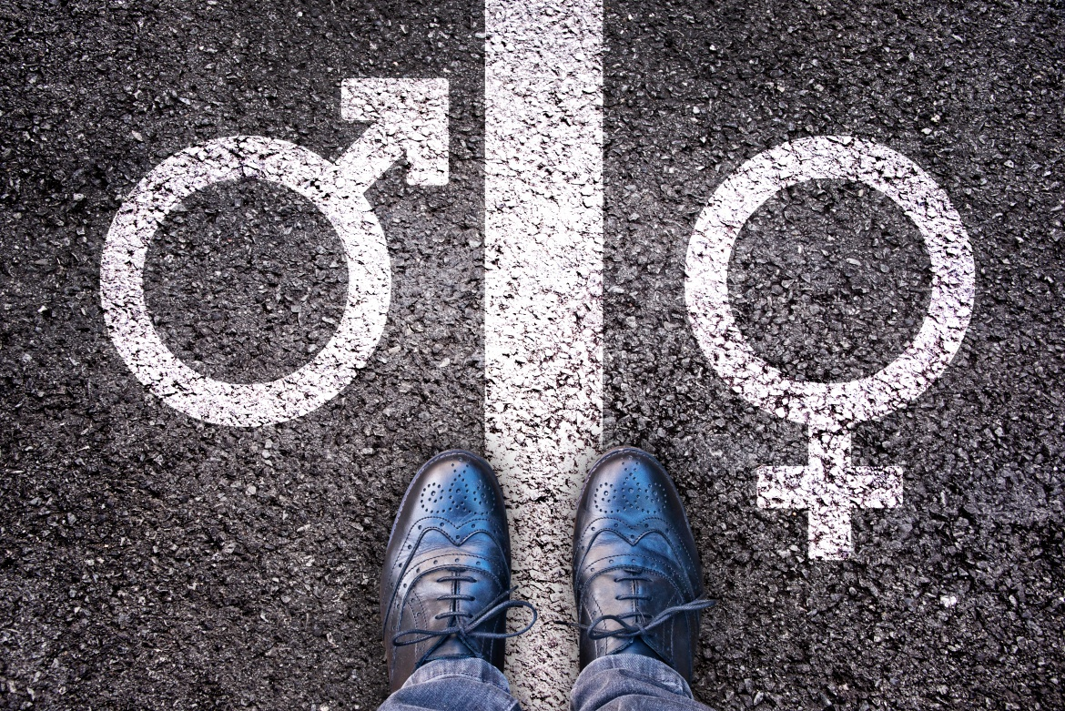 Do Not Adjust Your Set: Sex, Gender and Public Policy