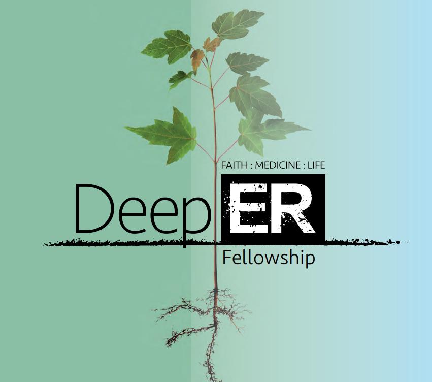 Deep:ER Fellowships now open!