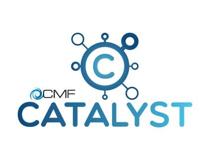 Catalyst teams